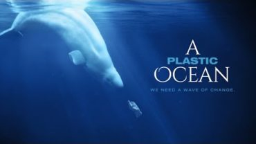 Save our Seas: A Plastic Ocean