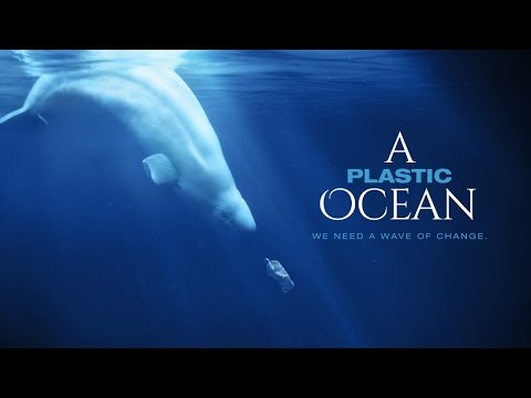 Save our Seas: A Plastic Ocean